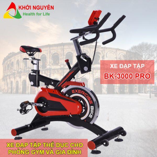 Xe đạp tập thể dục BK-3000 Pro