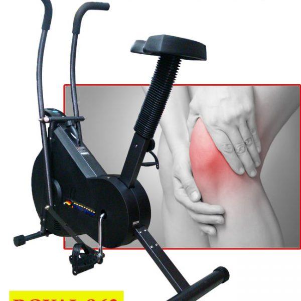 Xe đạp tập phục hồi chức năng Royal 963
