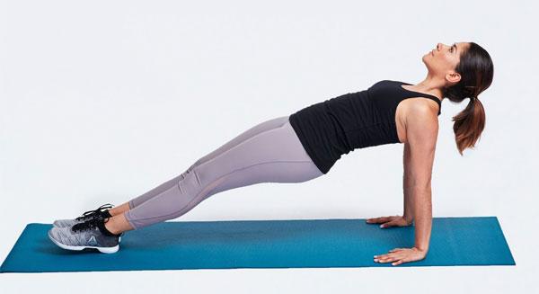 Bài tập Plank ngược (Reverse Plank)