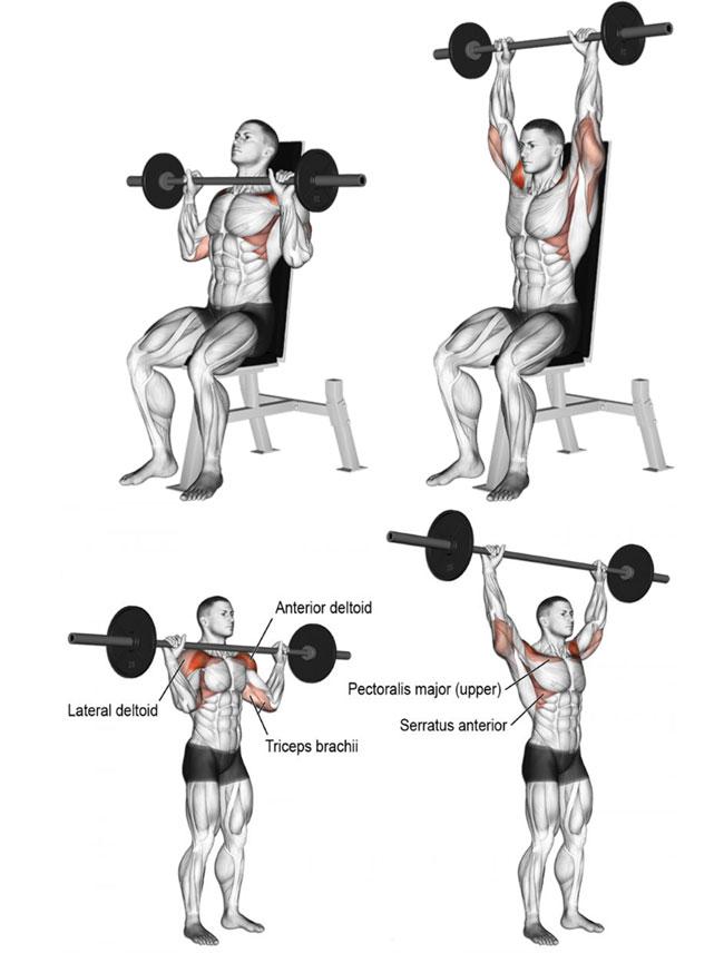 Bài tập Gym với đòn tạ