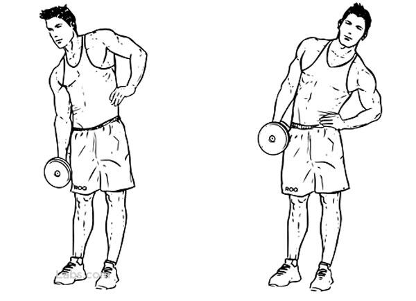 Dumbbell Side Bend-Bài tập cơ bụng với tạ tay
