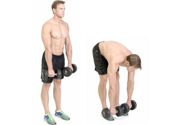 Two Arm Dumbbell Stiff Legged Deadlift
