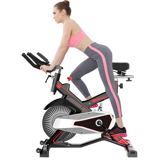 Xe đạp tập thể dục Fuji MK-100