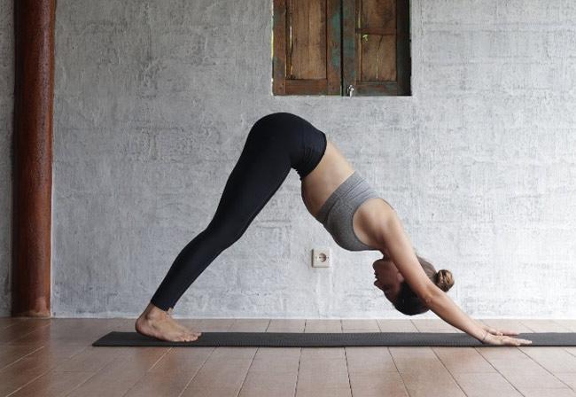 Bài tập yoga toàn thân tư thế chó cúi mặt
