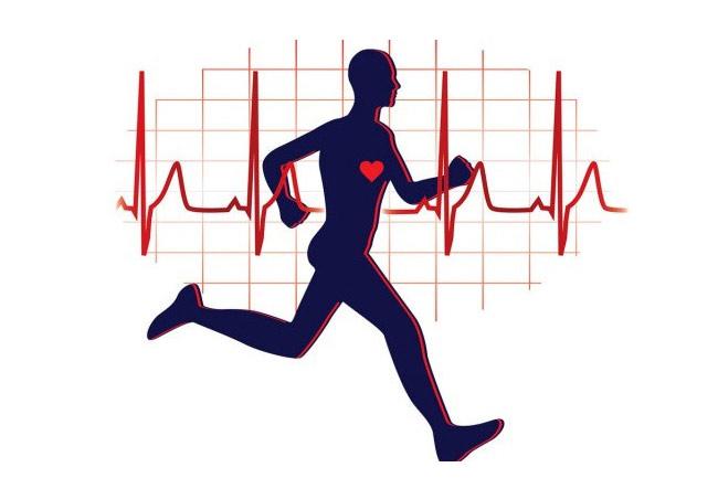 Bài tập tim mạch tốt nhất cho nam